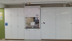 Double Sided Fume Hood DSCH
